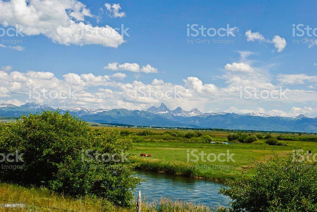 The Teton River stock photo