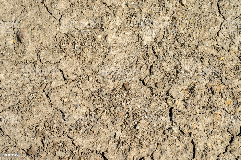 The texture of dehydrated land with a complete lack of vegetation. Background stock photo