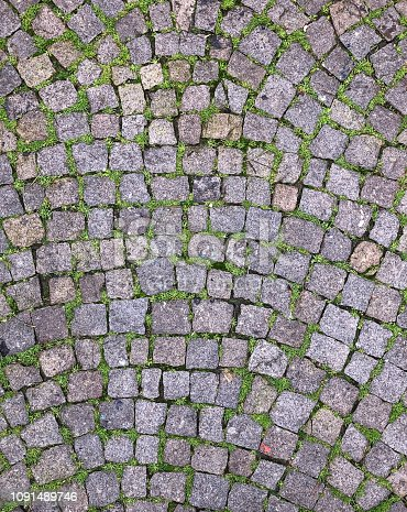 The texture of paving slabs made of natural gray stone and green moss.