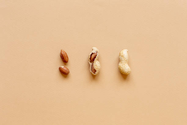 The texture with the walnuts on beige background. Peanuts in shells The texture with the walnuts on a beige background. Peanuts in shell allergy stock pictures, royalty-free photos & images