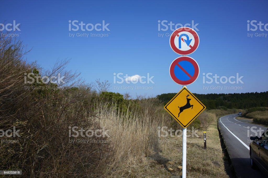 The thicket of deer jumped out warning signs and roadside stock photo