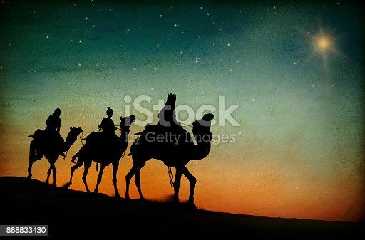 Camel on the edge of Dunes in Gobi desert in summer, Hongoran Els, sauth Mongolia.