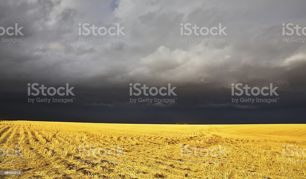 The thunder-storm in a countryside royalty-free stock photo