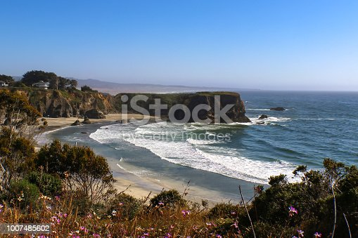 The tide rolls in to the shore around a bay and headland south of Mendicino California with defocused purple flowers in the foreground and misty shore and horizon stretching out behind