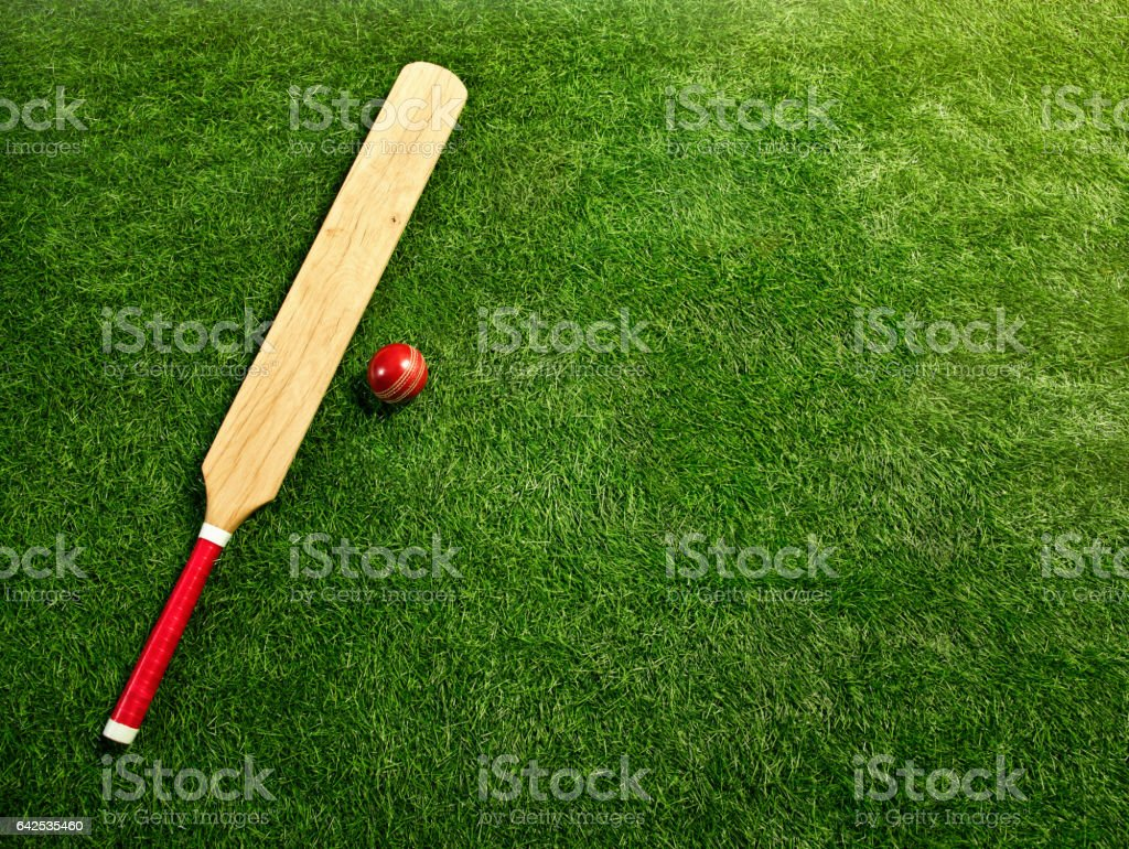 The tools for a cricket stock photo
