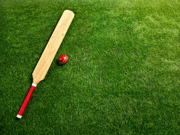 les outils pour un grillon - cricket photos et images de collection