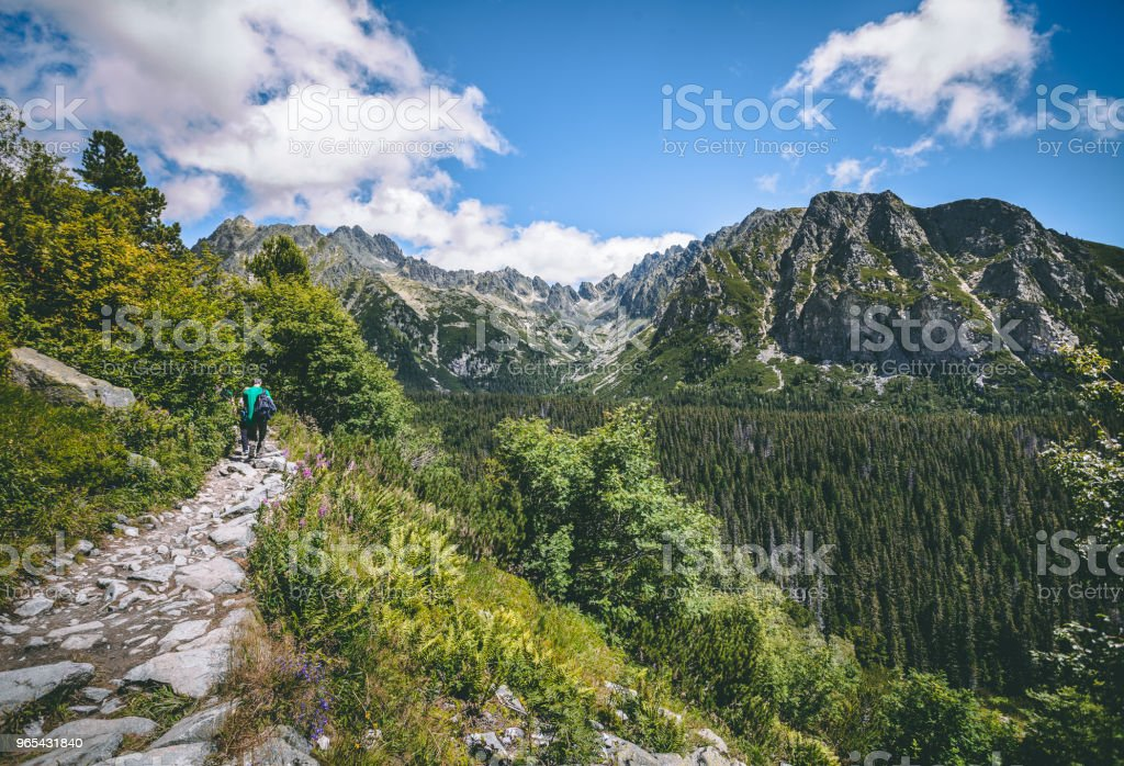 The tourists on the walking path. Tatra background zbiór zdjęć royalty-free