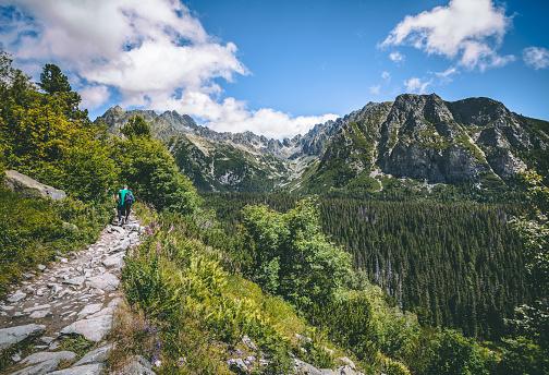 도보 경로에 관광객입니다 Tatra 배경 걷기에 대한 스톡 사진 및 기타 이미지