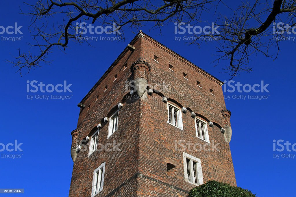 The Tower of Wawel Castle royalty-free stock photo