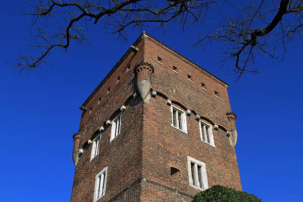 The Tower of Wawel Castle stock photo