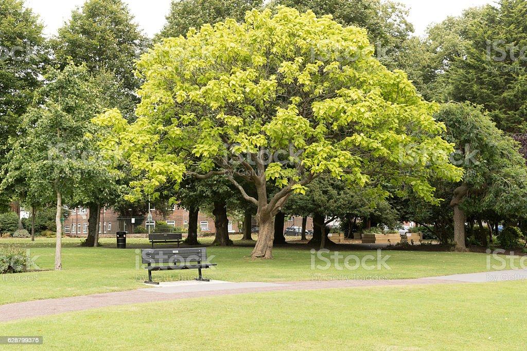 The town park in Alton, Hampshire, England stock photo