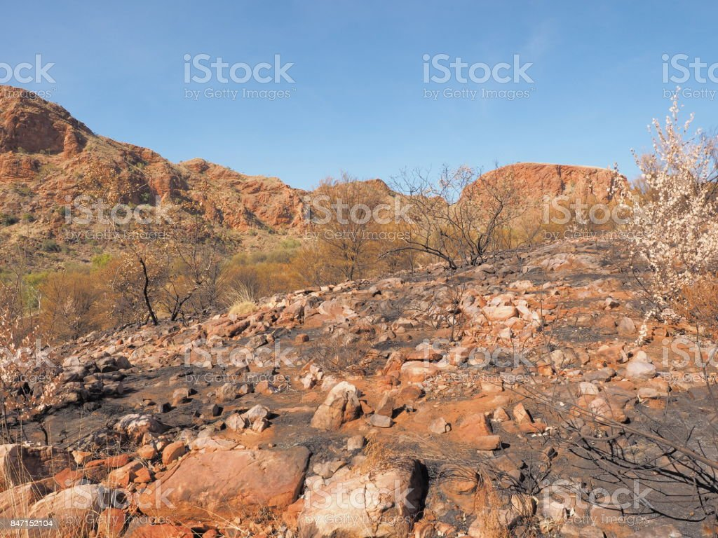 The track along the ridge of Trephina Gorge to Turners lookout stock photo