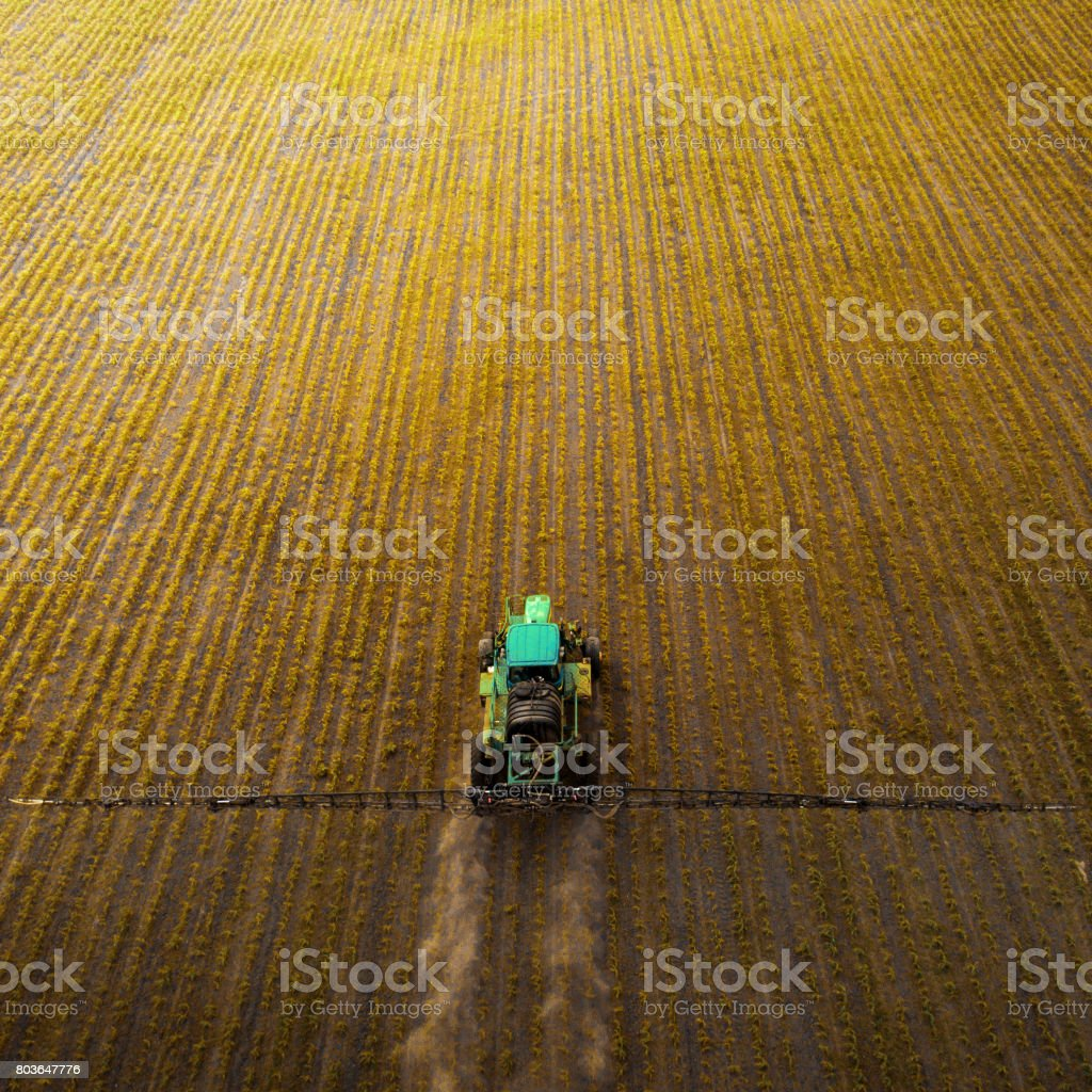 The tractor spraying the field with chemicals in the spring stock photo