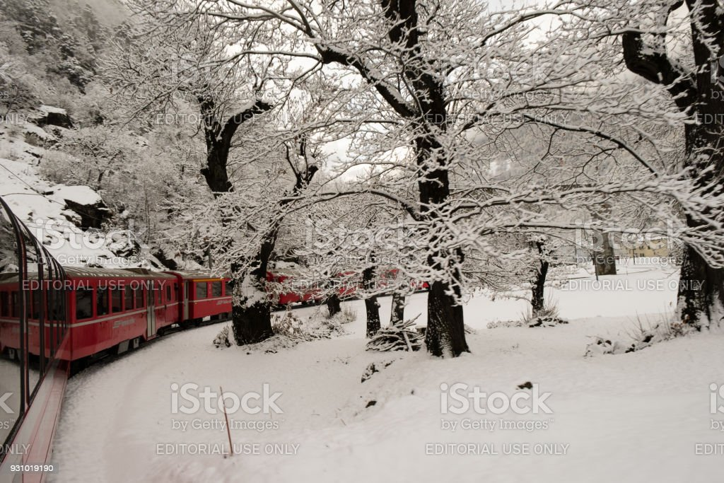 The train Bernina Express in winter, with snow stock photo