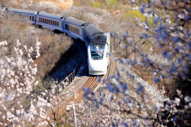 The train running stock photo