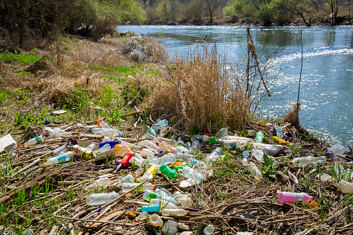 the trash by the river
