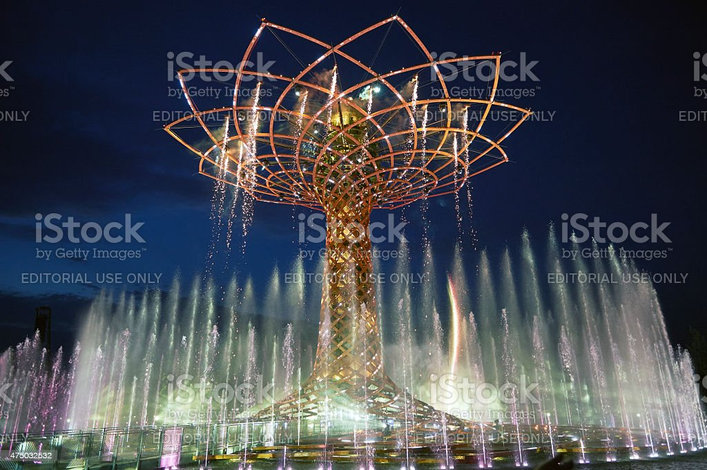 The Tree of Life. Color Image stock photo