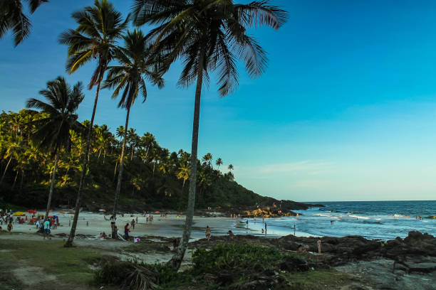 The tropical beauty of northeastern Brazil