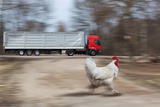 Cтоковое фото Грузовик быстрого движения на шоссе