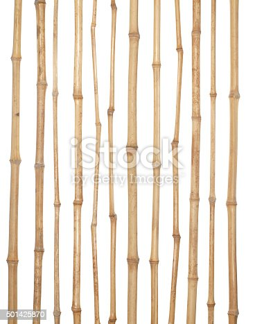 The trunks of various thicknesses of dry bamboo isolated on white background.