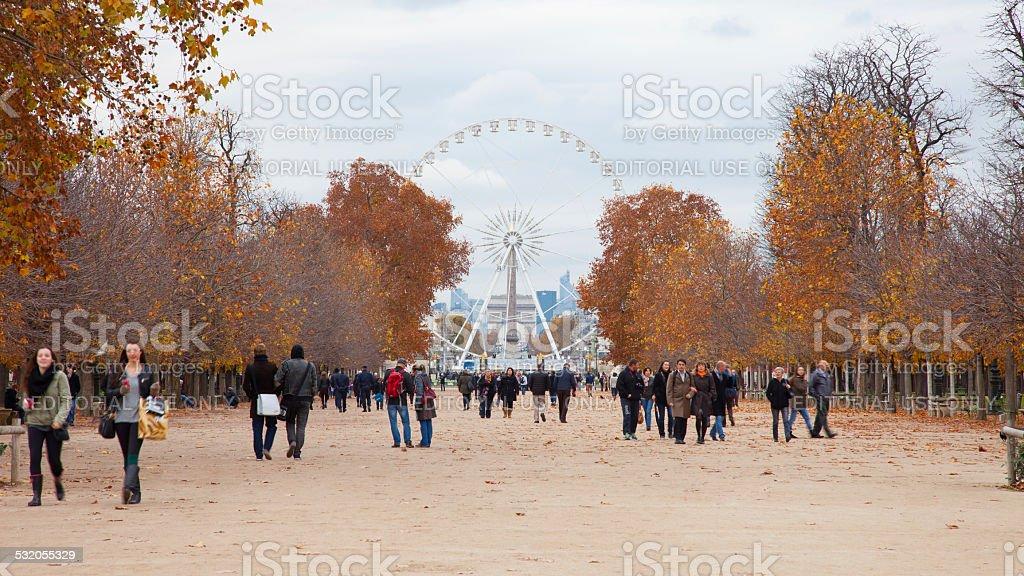 The Tuileries Garden stock photo