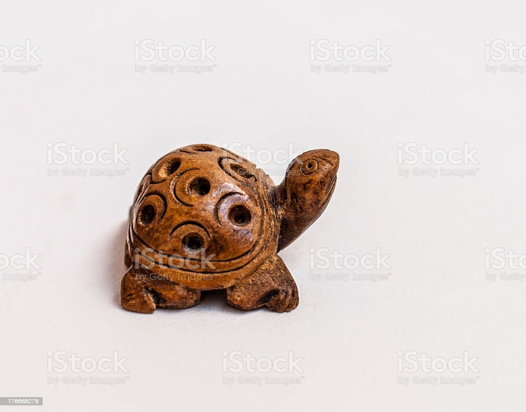 the turtle royalty-free stock photo