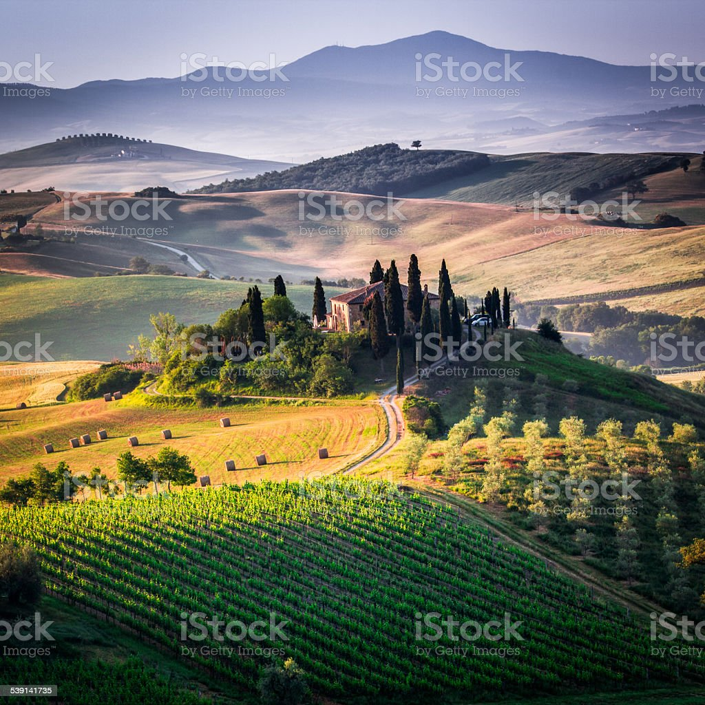 The Tuscan Landscape stock photo
