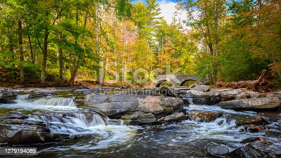 Image fpr autumn photo catalog