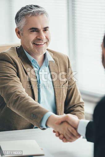 The two businessmen handshaking in the office