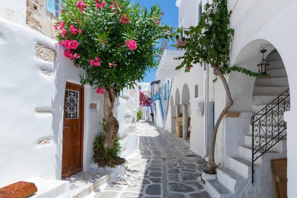 les cyclades typiques, des ruelles blanchies à la chaux avec des fleurs colorées à parikia sur l'île de paros - grece photos et images de collection