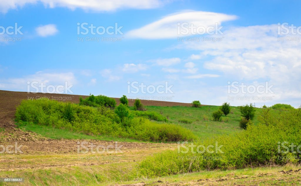 The Ukrainian open spaces under the blue sky 免版稅 stock photo