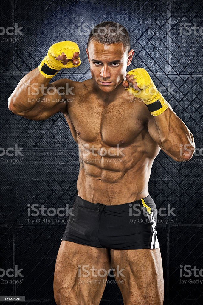 The Ultimate Fighter royalty-free stock photo