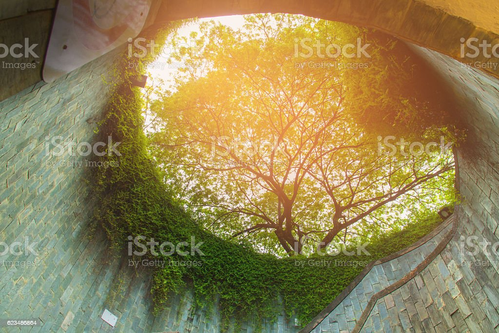 the underground crossing at Fort Canning Park stock photo