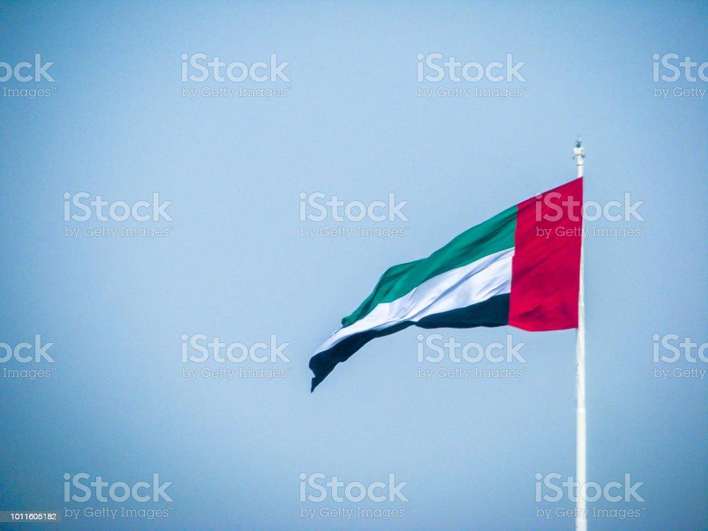 아랍 에미리트 연방 깃발을 흔들며 - 로열티 프리 국경일 스톡 사진