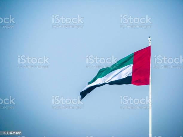 아랍 에미리트 연방 깃발을 흔들며 국경일에 대한 스톡 사진 및 기타 이미지
