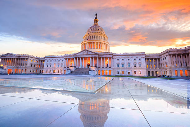 the united states capitol building - government stock photos and pictures