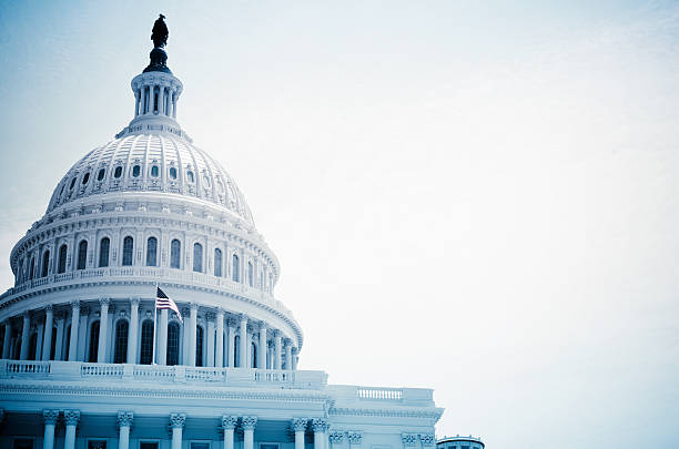 The United States Capitol building - Washington DC  state capitol building stock pictures, royalty-free photos & images