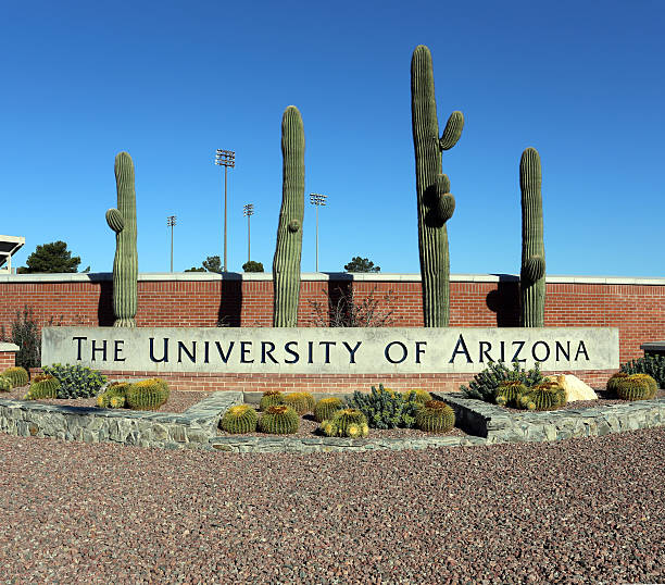 The University of Arizona Tucson, AZ, USA – March 16, 2014: An entrance to The University of Arizona located in Tucson. The University of Arizona is a public research university founded in 1885. pima county stock pictures, royalty-free photos & images