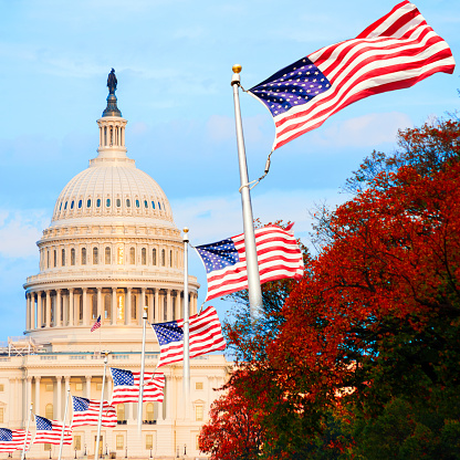 istock The US Capitol in Washington D.C., USA, at sunset 621905776
