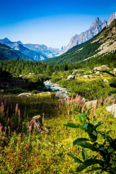 The Valley of Lavachey Italy stock photo