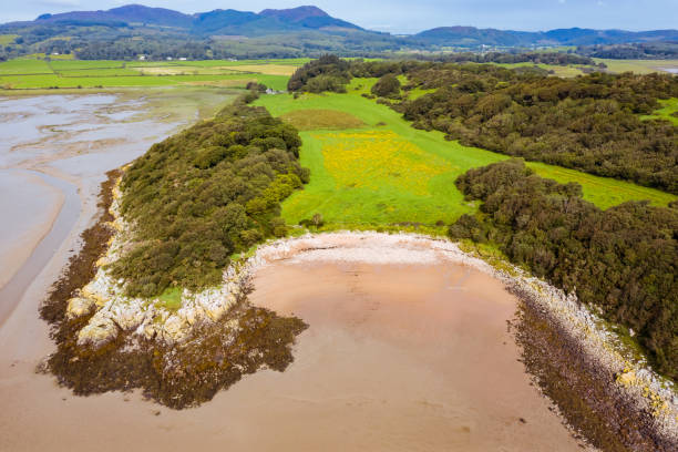 The view from a drone of a deserted Scottish beach in Dumfries and Galloway, south west Scotland The view from a drone of a small sandy beach in south west Scotland. The image was captured in the morning on a Summers day at low tide. johnfscott stock pictures, royalty-free photos & images