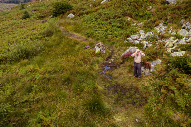 The view from a drone of an active retired man standing beside a footpath using a pair of binoculars in a remote part of Dumfries and Galloway in south west Scotland One active senior man looking at a map while sitting beside a footpath near the summit of a rugged hill. The hill is in the rural landscape of Dumfries and Galloway, south west Scotland. The image was captured by a drone being flown above the man. The image was captured on a summer morning and the footpath is overgrown by lush fern and bracken. johnfscott stock pictures, royalty-free photos & images
