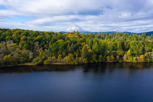 The view from a drone of forest growing beside a Scottish loch in Dumfries and Galloway south west Scotland. The view from a drone as it is flown over a Scottish loch towards mixed woodland. The image was captured on an autumn morning, some of the trees have started to show their autumn colours. johnfscott stock pictures, royalty-free photos & images