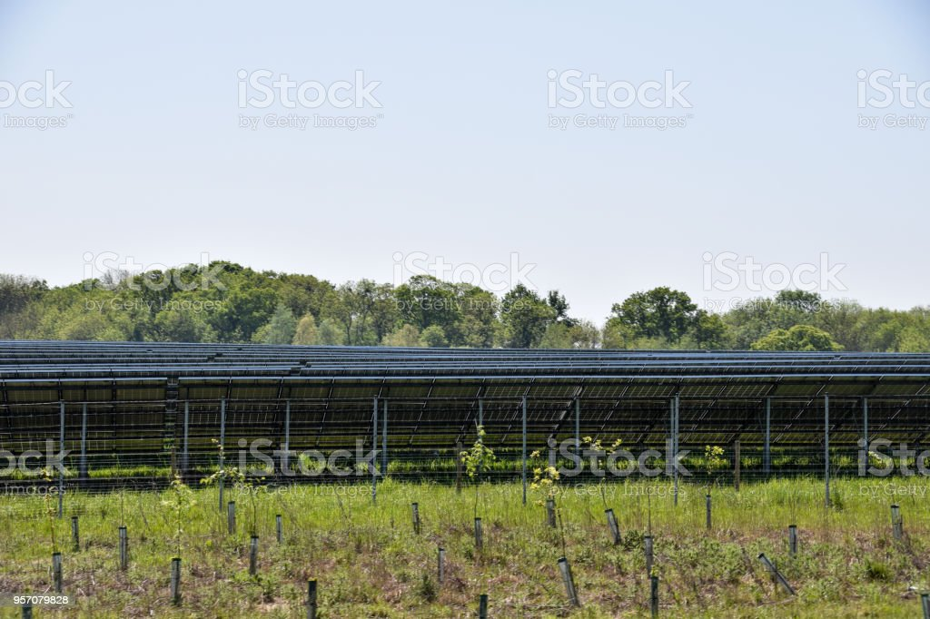 The view from behind of solar panels at a solar power farm stock photo