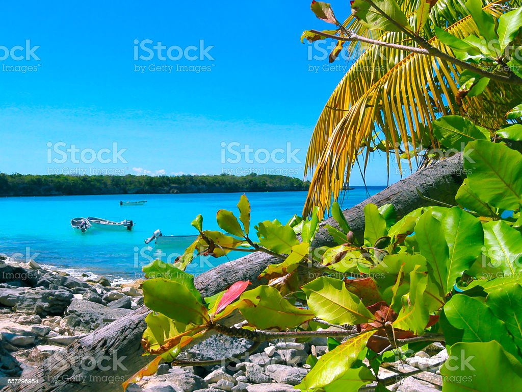 The view of the Catalina island, Dominican Republic stock photo