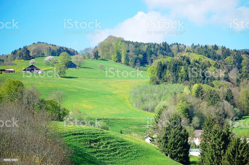 The view spring landscape in Switzerland royalty-free stock photo
