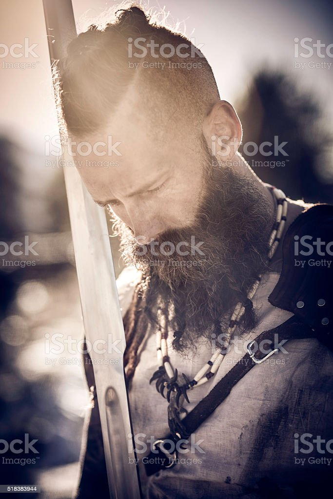 The Viking stock photo