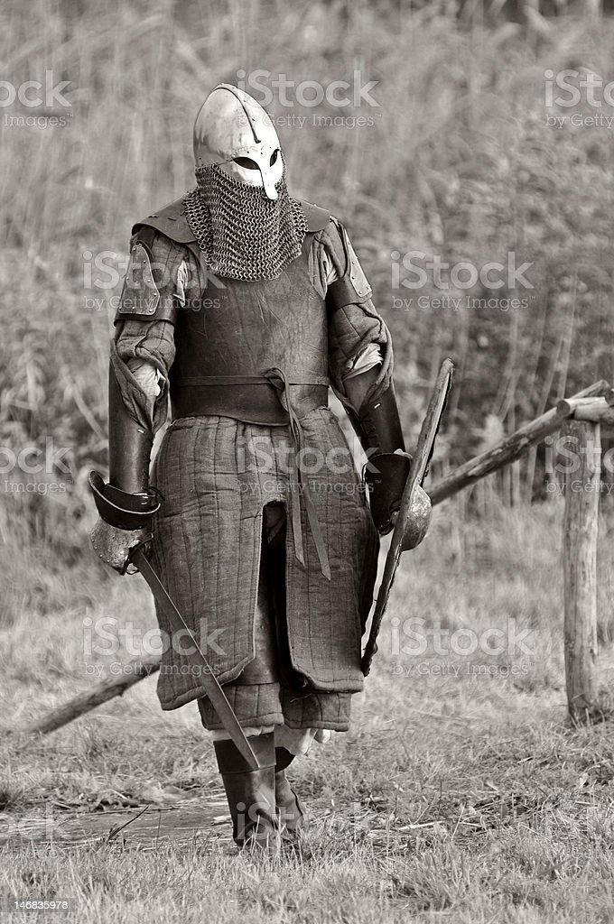 The Viking Warrior. royalty-free stock photo