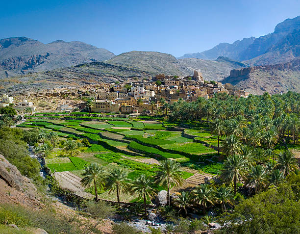 The village in sultanate Oman The village Bilad Sayt, sultanate Oman riverbed stock pictures, royalty-free photos & images