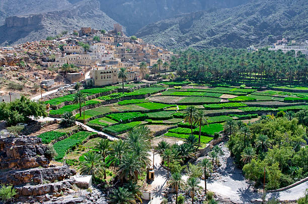The village, sultanate Oman The village Bilad Sayt, sultanate Oman riverbed stock pictures, royalty-free photos & images